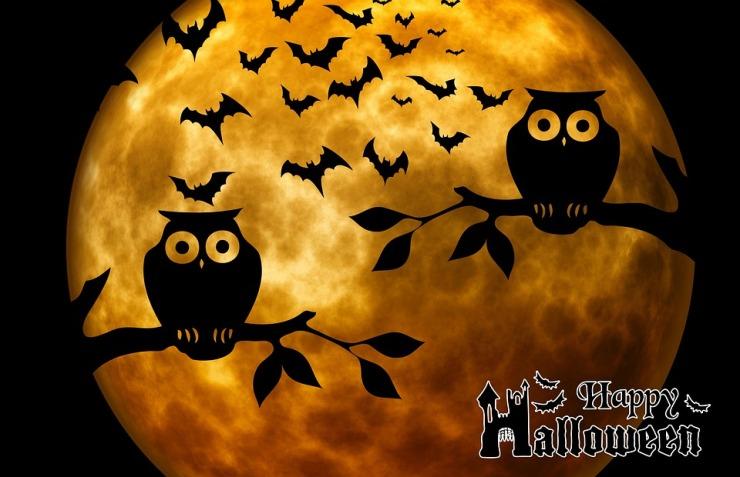 happyhalloween-975519_960_720